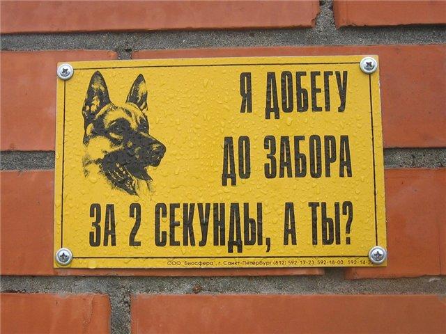 http://images.vfl.ru/ii/1312488715/40228bed/54531.jpg