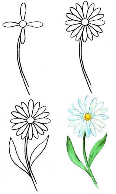 Как нарисовать цветок.