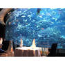 aquarium-burj-al-arab[1]