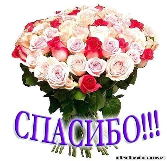 http://images.vfl.ru/ii/1315978069/852808bf/111519_m.jpg