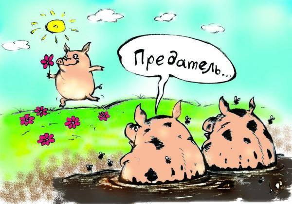 Через Крым полезла вся контрабанда. Он вообще превратился в одну большую налоговую яму, - Миндоходов - Цензор.НЕТ 5729