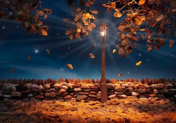 http://images.vfl.ru/ii/1317138056/662f22be/125036_m.jpg