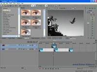Видео монтаж в Sony Vegas 9-10 (2011)