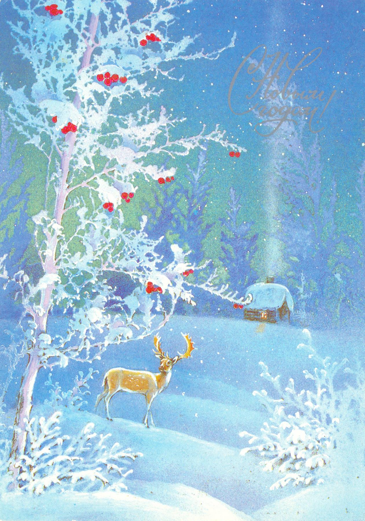 Зимние открытки фото