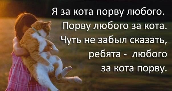 http://images.vfl.ru/ii/1327263406/180928b7/287731_m.jpg