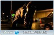 Портал Юрского периода / Первобытное / Primeval / Сезон: 1 / Серии: 1-6 (6) [2007, фантастика, боевик, фэнтези, DVDRip/HDRip-AVC] MVO ТВ3 Original