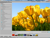 ACDSee Photo Manager 14.3 Build 168 Rus