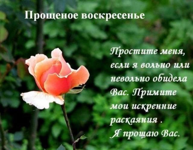 http://images.vfl.ru/ii/1330238825/a17dbbb0/353269_m.jpg