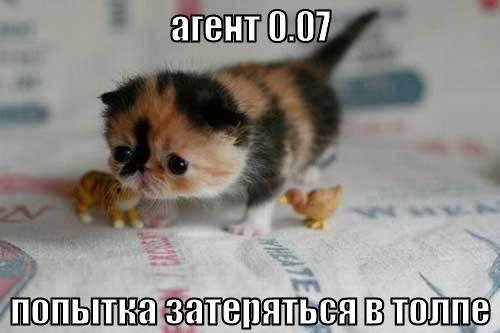 http://images.vfl.ru/ii/1331908333/28e3e508/399518_m.jpg