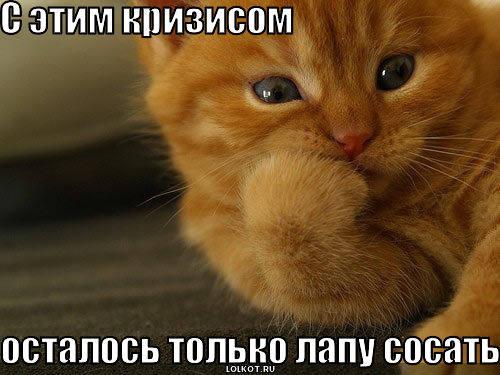 http://images.vfl.ru/ii/1331908334/5ea7e8f3/399524_m.jpg