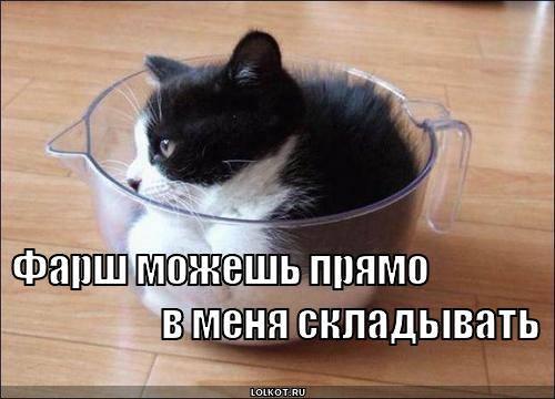 http://images.vfl.ru/ii/1331908334/78489bf5/399522_m.jpg