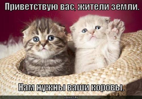http://images.vfl.ru/ii/1331908335/9acffc9a/399527_m.jpg