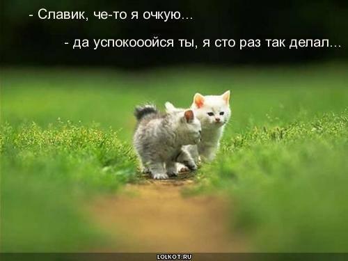 http://images.vfl.ru/ii/1332046329/0bedd988/403756_m.jpg