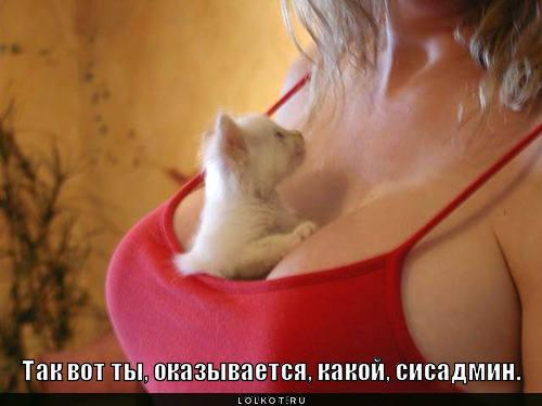 http://images.vfl.ru/ii/1332046329/4aa6b300/403755_m.jpg