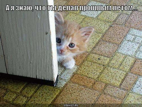 http://images.vfl.ru/ii/1332046329/4f794bf7/403754_m.jpg