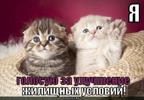 http://images.vfl.ru/ii/1332046330/7ab8fbd5/403759_m.jpg
