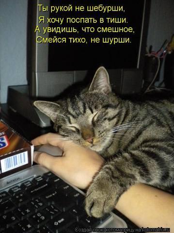 http://images.vfl.ru/ii/1333951046/b570c46a/455720_m.jpg