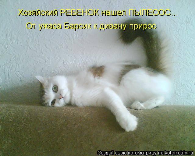 http://images.vfl.ru/ii/1333951047/b0655270/455722_m.jpg