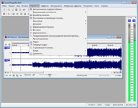 Sony Sound Forge Pro 10.0d Build 503 Rus/Eng RePack