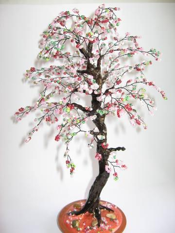 Вот : Высота деревьев 22-25 см Сакуры.  Осеннее дерево и Золотой бонсай.