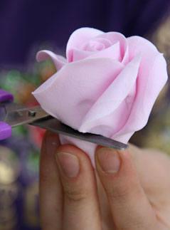 Цветы 652346_m
