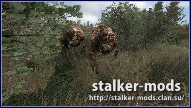 Stalker-COP