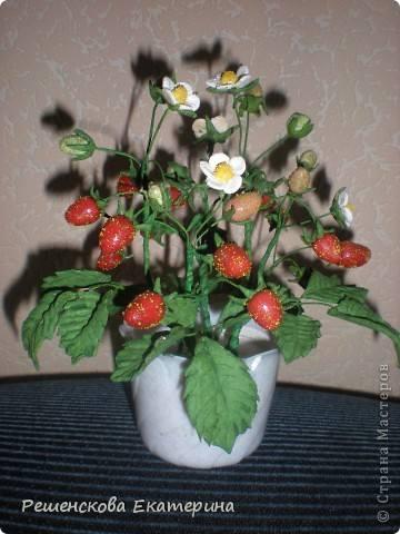 http://images.vfl.ru/ii/1342768166/91d92f0a/744968_m.jpg
