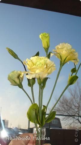 http://images.vfl.ru/ii/1343110797/51f4330e/756007_m.jpg