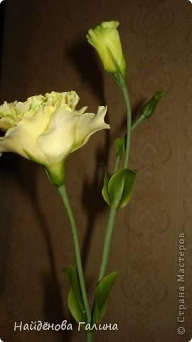 http://images.vfl.ru/ii/1343110807/f26135b0/756008_m.jpg