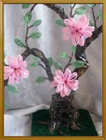 http://images.vfl.ru/ii/1344841567/ee1eccef/811767_s.jpg