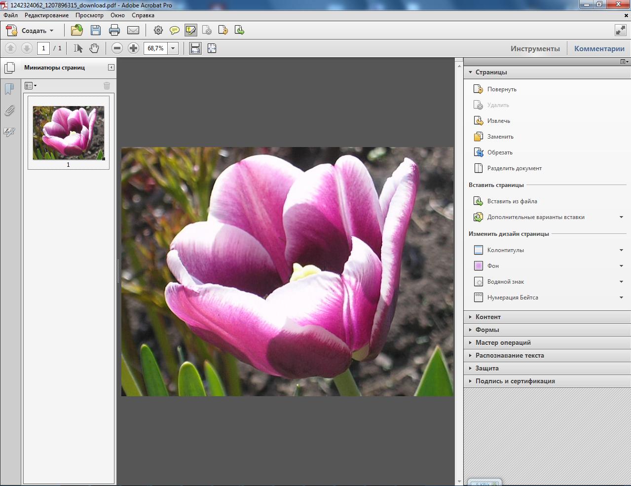 Adobe Acrobat X Professional 10.1.4