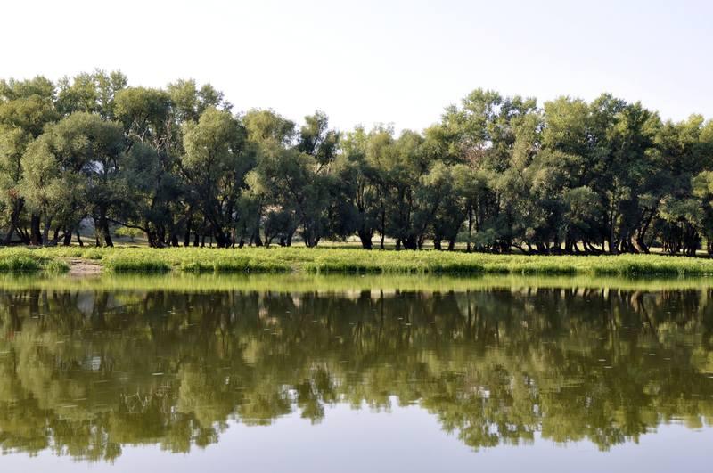 станица вешенская ростовская область рыбалка