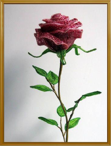 http://images.vfl.ru/ii/1348242907/81ce0efe/950275_m.jpg