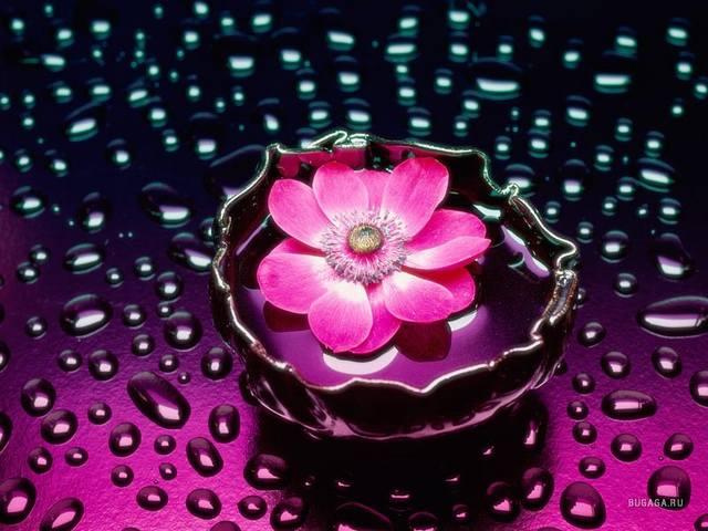 http://images.vfl.ru/ii/1348727523/56ddaddf/971206_m.jpg