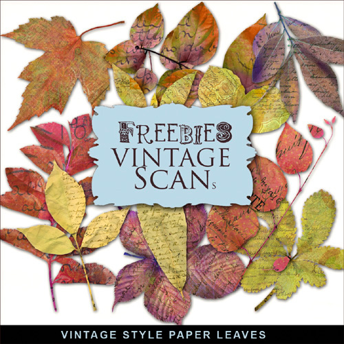 Scrap kit - Collection of Autumn Paper leaves