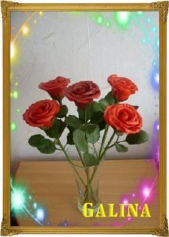 http://images.vfl.ru/ii/1350528832/b16f7ca3/1069895_m.jpg