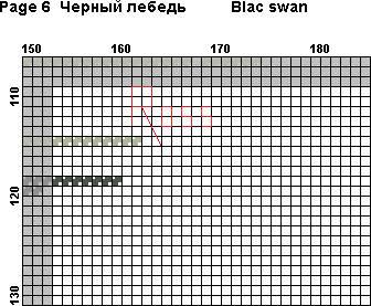 черный лебедь(5)
