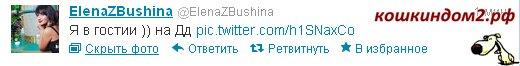 Елена Бушина - Страница 2 1252481
