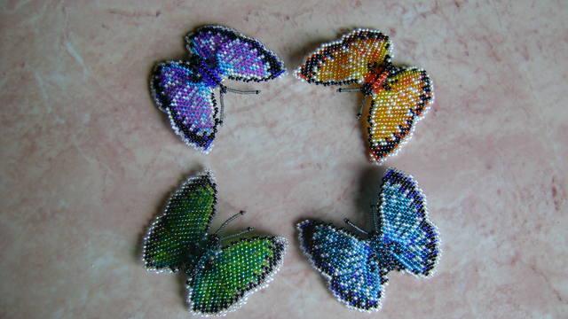 И снова бабочки .