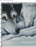 Волки 1(5)