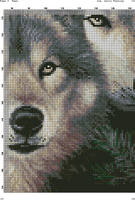 Два волка на черном(4)
