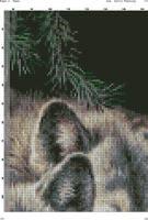 Два волка на черном(1)