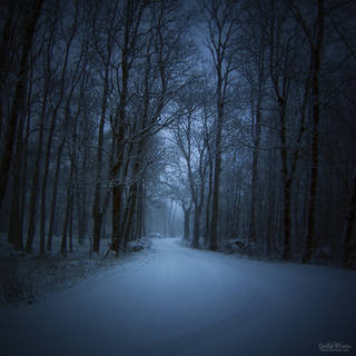 GOTHIC WINTER by JTphoto