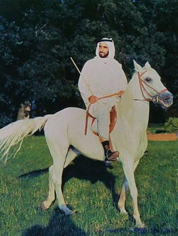 454px-Шейх Заед бен Султан Аль Нахайян 02