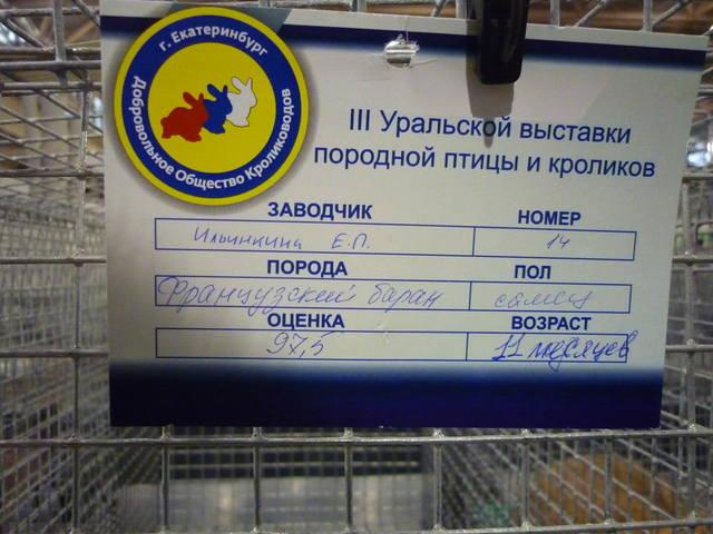 III Уральская выставка породных птиц и кроликов. г. Екатеринбург 01-02 декабря 2012 года - Страница 2 1321687_m