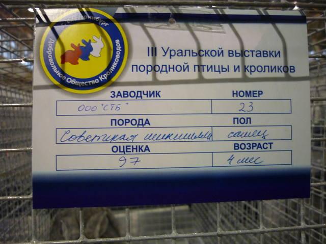 III Уральская выставка породных птиц и кроликов. г. Екатеринбург 01-02 декабря 2012 года - Страница 2 1321772_m