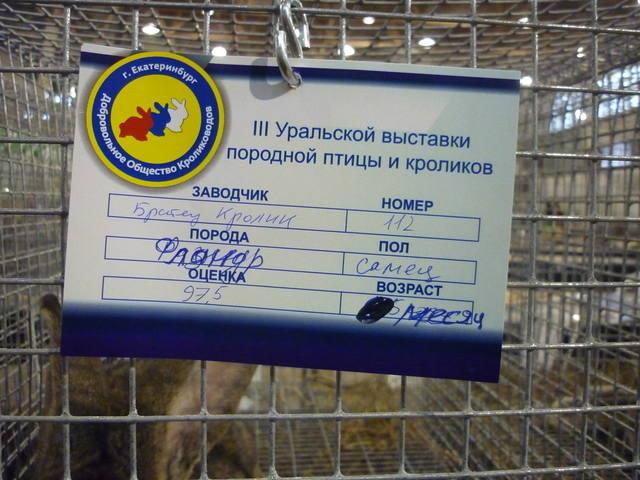III Уральская выставка породных птиц и кроликов. г. Екатеринбург 01-02 декабря 2012 года - Страница 2 1322145_m