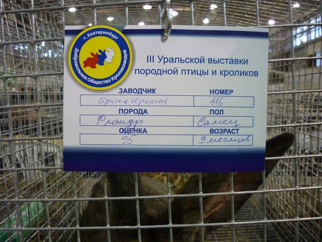 III Уральская выставка породных птиц и кроликов. г. Екатеринбург 01-02 декабря 2012 года - Страница 2 1322391_m