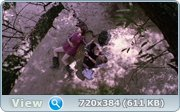 http://images.vfl.ru/ii/1355571131/f59c7eb1/1389525.jpg