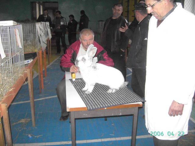 выставка в Ужгороде. - Страница 2 1436002_m